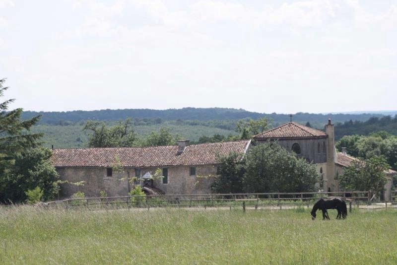 Buiten bij de paarden