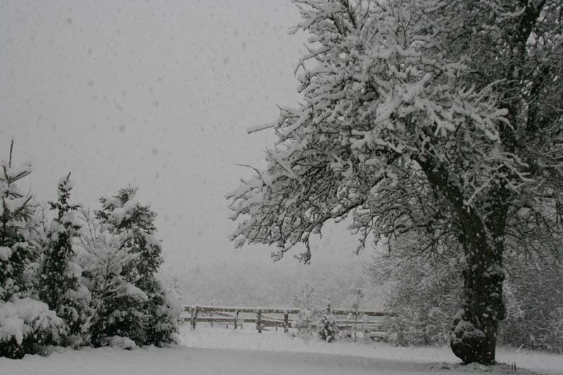 Klooster omgeving sneeuw