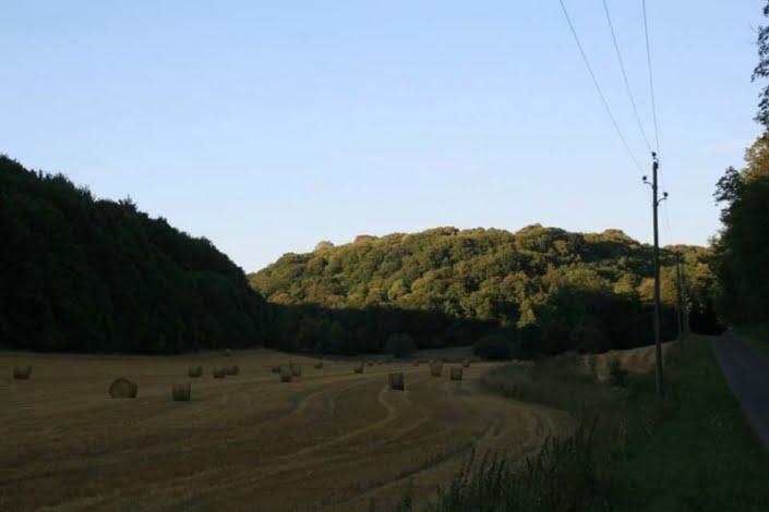 Natuur in Frankrijk