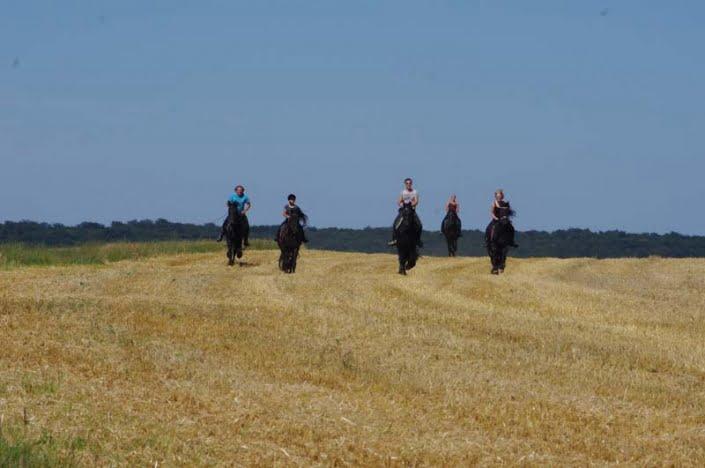 Paardenrit in de natuur bij klooster